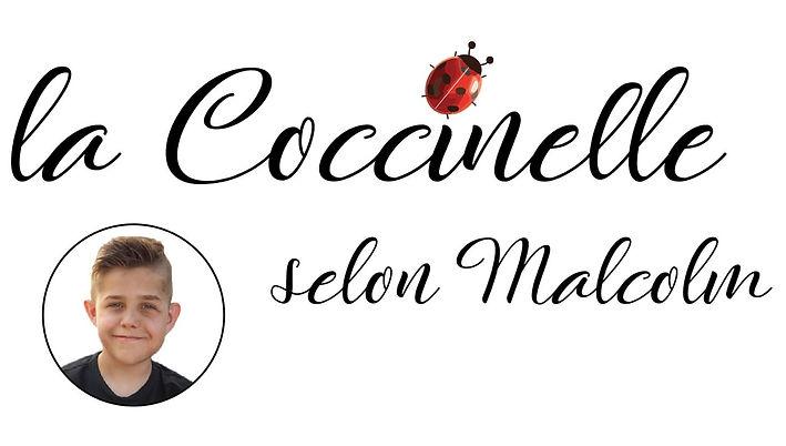 La coccinelle selon Malcolm.jpg