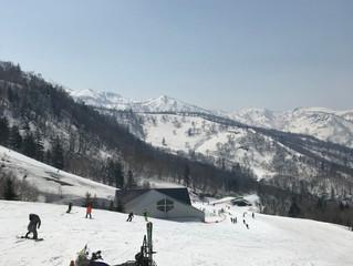スキー場と、はちみつレモン