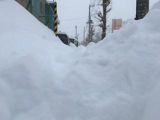 降雪量36cmの旭川