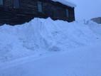 降雪量78cmの旭川