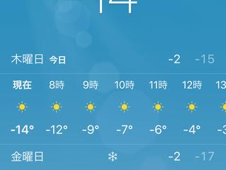 紅茶を飲んで寒さを凌ぐ2月末