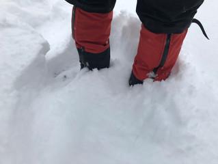 久しぶりの恵みの雪です。