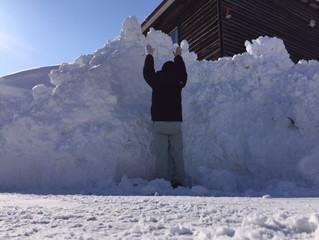 雪山万歳!1月30日(水)