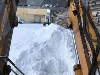 今日の会社の雪の状況