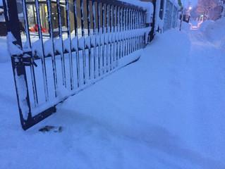 大雪に覆われて