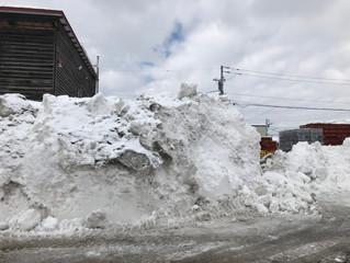レンタカーで排雪作業