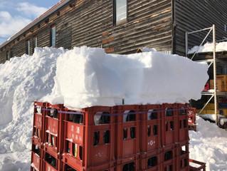 雪が多い地域の様子