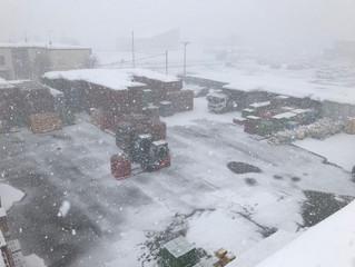 屋根の雪下ろし(倉庫)3月2日