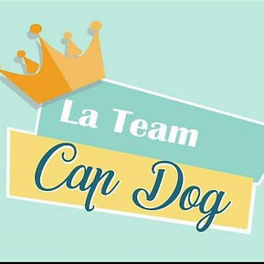 team cap dog.jpg