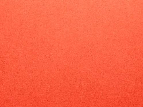 Tangerine Certificate Folders- from $3 each