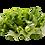 Thumbnail: Escarola Congelada Grano 1kg