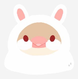 文鳥動物裝-兔子