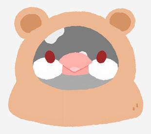 文鳥動物裝-熊