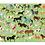 Thumbnail: Thirty-Six Horses