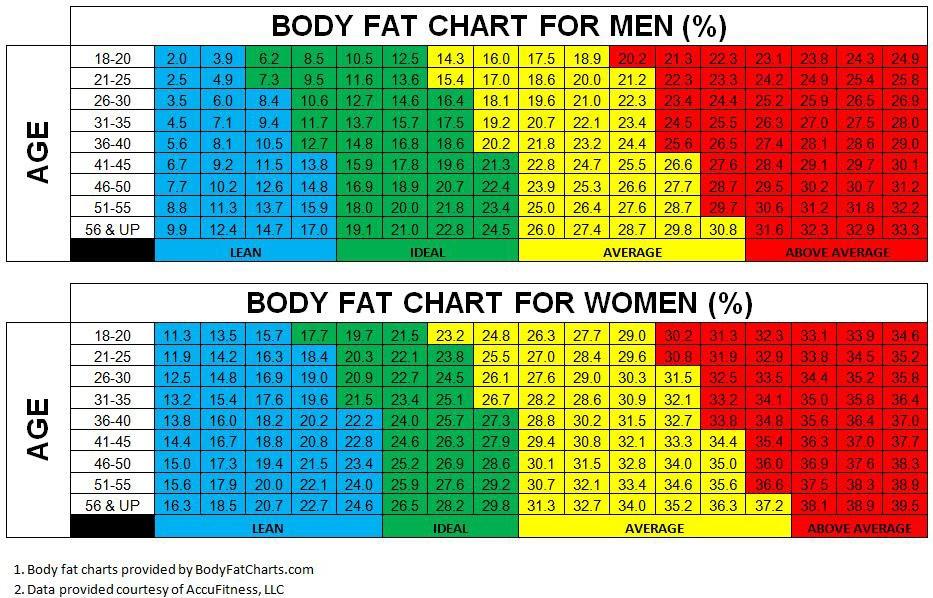 黃天厚-醫生-體重-體脂-管理