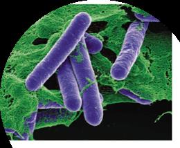 肉毒桿菌素的11個問題