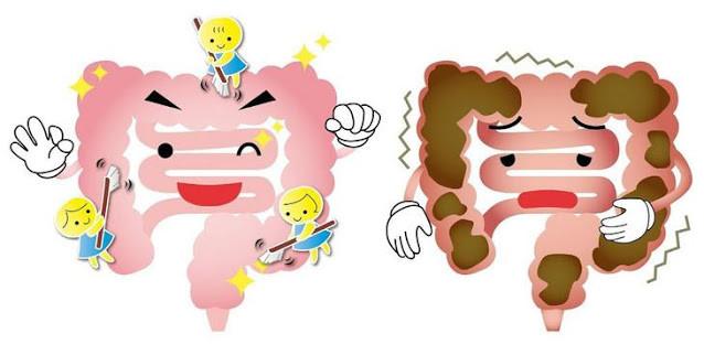 黃天厚-醫生-減肥-補充劑-益生菌