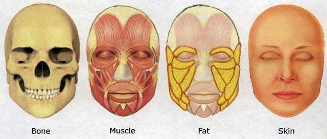 黃天厚-醫生-提升面部輪廓-多方面結合