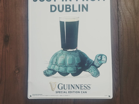 Turtle Guinness