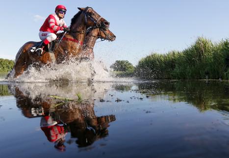 Seejagdrennen / Horner Derby