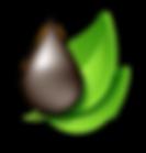Pirólise de biomassa - Ecoeficiência -