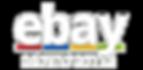 לוגו ראשי הדרכה להצלחה באיביי.png
