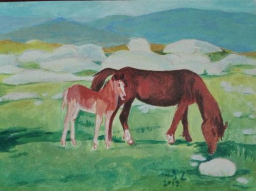 Cavalo a Pastar - Inês Lopes