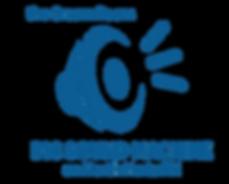 BSM Logo1.png