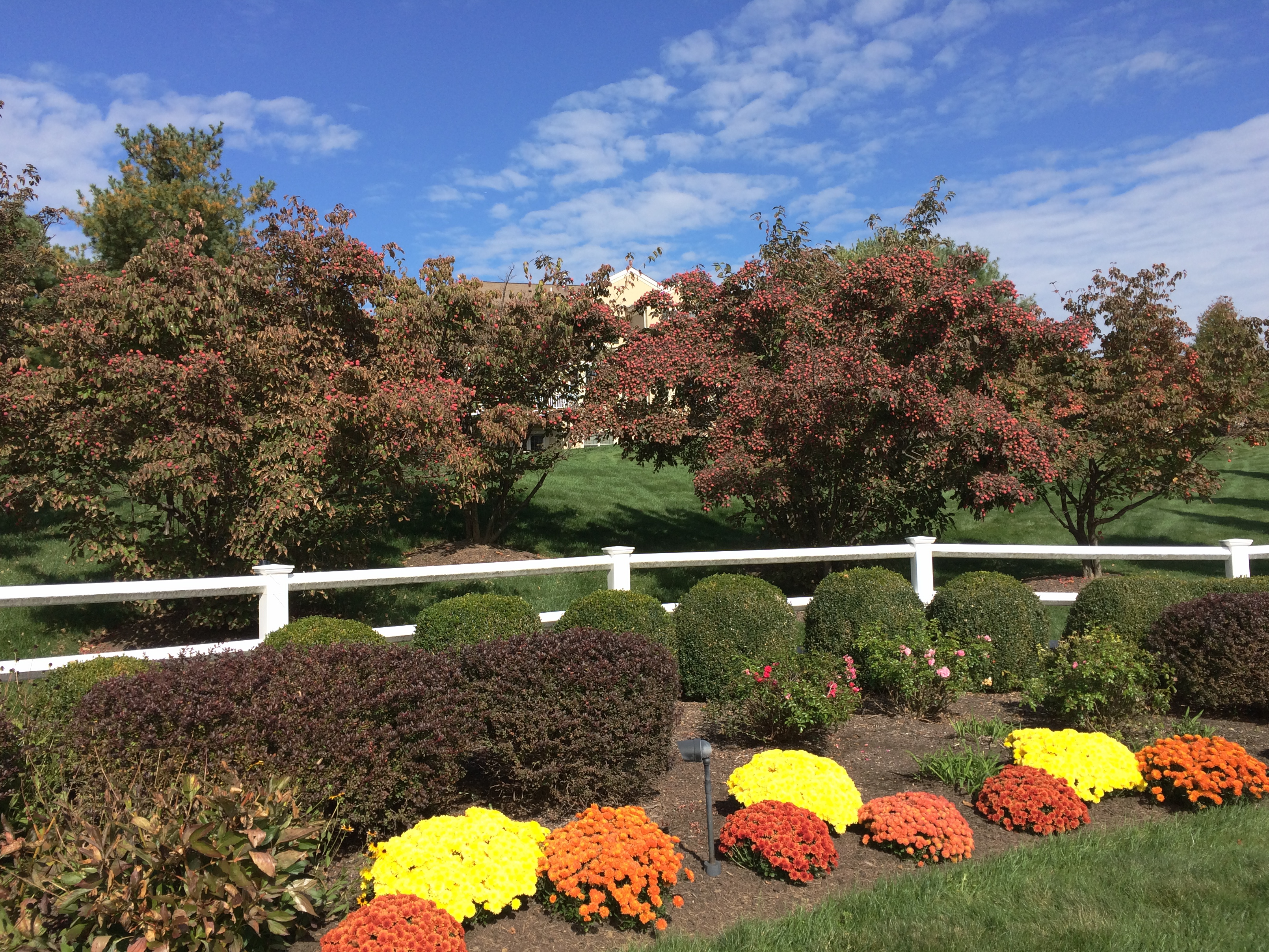 Four Seasons at Chester