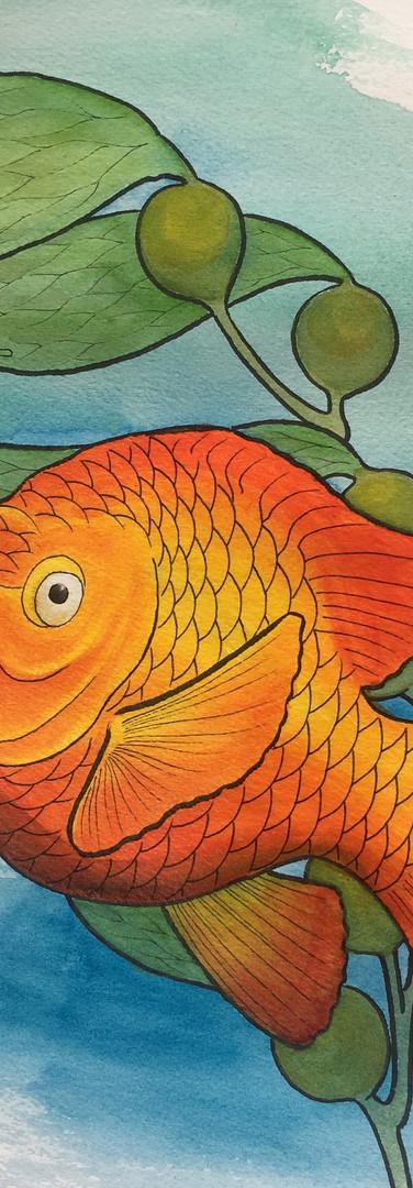 garibaldi watercolor 1.jpeg