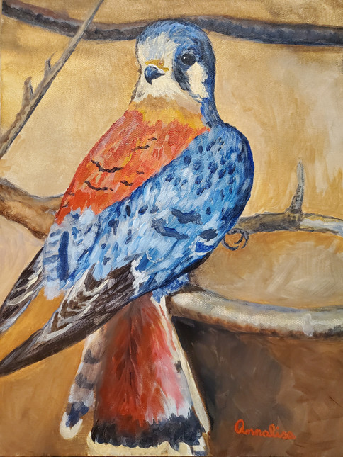 Impression of an American Kestrel by Dabblers Corner Arts