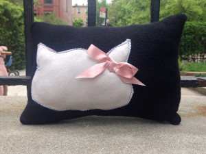 The htE Volunteer Experience (The Cat Pillow (and why you should buy it!))