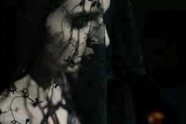 Joy Shannon veil by Xun Chi.jpg