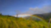 Rainbow in Peru by Sarah Dittmore, Creative Agency