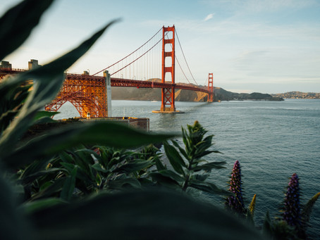 How to Live in San Francisco