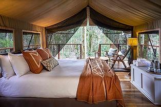 Original Safari Tent Paperbark Camp