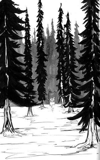 """""""Woodlands de la Paz"""""""