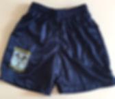 TTSS_Shorts.jpg