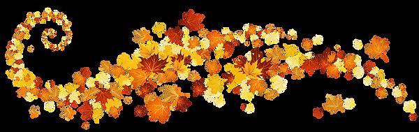 yellowleafautumntreeplantflowermaplemaple-leafflowering-png-of-fall-1020_321.png
