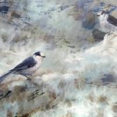 Timeless1703-National Birds the Gray Jay_36x48in_Mixed Media