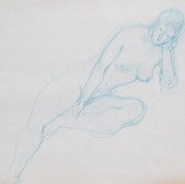 Nude-2904 (10.5x12.5in) Colour Pencil on Paper