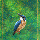 Tumeless2015-King Fisher_20x16in_Acrylic