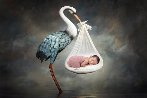 infant photography in kolkata.jpg