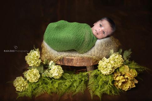 cute newborn baby pics
