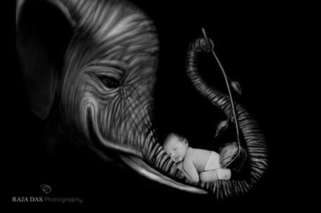 creative newborn photo ideas