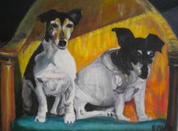 De hondjes