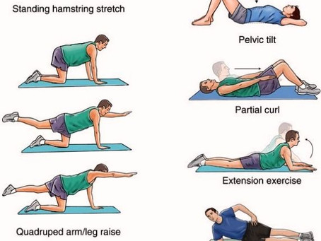 What can help with PREVENTION in low back pain