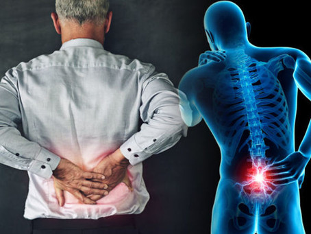 How Likely are you to have multiple episodes of low back pain?