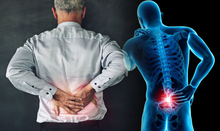 Low Back Pain Relief At Health Wise Chiropractic in Sunbury and Bundoora