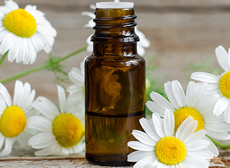 Essential Oils:Chamomile Roman Oil